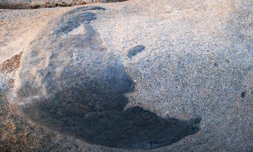 bellezze-Corsica-le-rocce-artistiche -isola-Cavallo-bacio-luna
