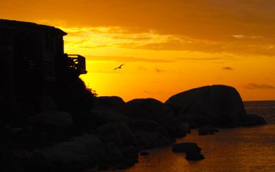 Vacanza romantica in Corsica: 5 cose da fare sull'isola di Cavallo